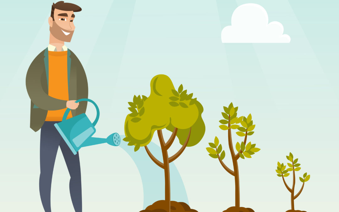 Should I pay off my debt or start investing represented by man watering tree